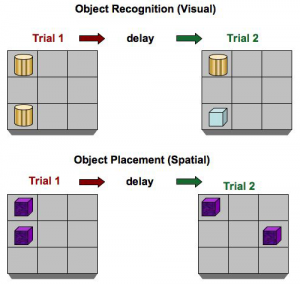 Object Recognition and Object Placement